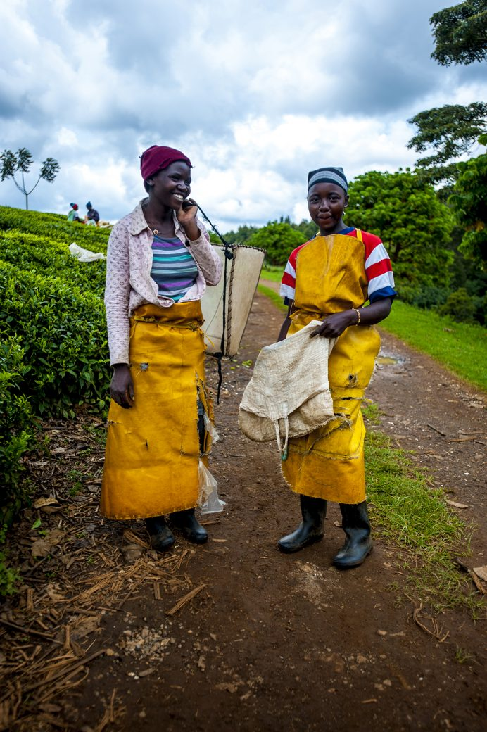 kenya tea pickers limuru Wieke Braat